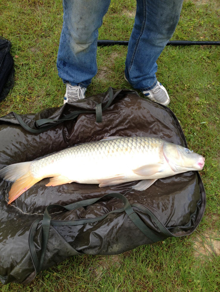 smallwater-carp-fishing-lakes-in-france