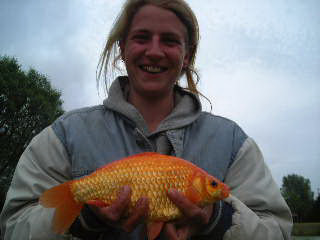 big-goldfish-from-smallwater-lake