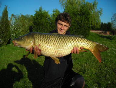 big-common-carp-from-smallwater-lake