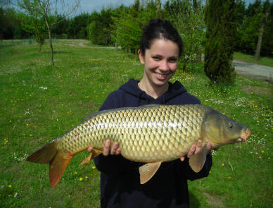 21-lb Common carp from smallwater lake in france